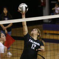 varsity volleyball 5