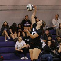 varsity volleyball 4